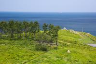 青森県 種差海岸の鮫角灯台からの眺望