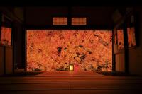 日本 兵庫県 但馬安国寺 ドウダンツツジの紅葉