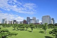 東京都 皇居外苑と丸の内のビル群