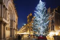 イタリア クリスマスツリー