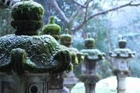 京都 西明寺 雪