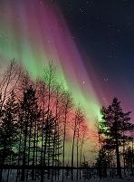 フィンランド 北極 オーロラ