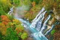 北海道 美瑛町 白髭の滝と紅葉