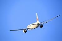 離陸する飛行機 伊丹空港 JAL