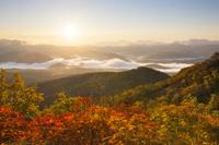 北海道 大雪山赤岳 紅葉の銀泉台