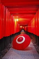 日本 京都府 伏見稲荷千本鳥居と蛇の目傘