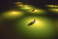 徳島県 吉野川のシラスウナギ漁