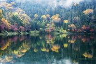 長野県 紅葉の双子池 雄池