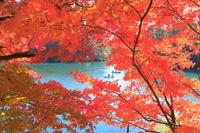 福島県 秋の毘沙門沼