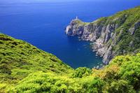 長崎県 新緑の大瀬埼灯台と断崖絶壁 福江島