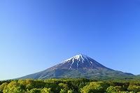 山梨県 道の駅なるさわから見る残雪の富士山