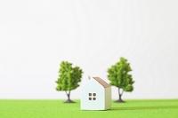 芝生に置かれたミニチュアの家と木