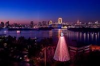 東京都 クリスマスイルミネーションとレインボーブリッジ