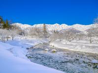 長野県白馬村 大出の吊橋の雪景色