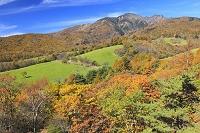 山梨県 北杜市 大泉町 八ヶ岳牧場 牧場と紅葉の山並み