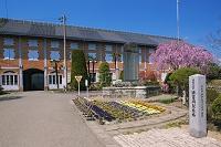 群馬県 桜咲く富岡製糸場 東繭倉庫