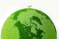 緑の地球に咲く新芽