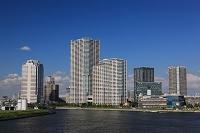 東京都 豊洲のタワーマンション