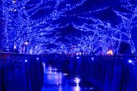 東京都 青の洞窟