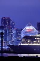 東京都 晴海埠頭に停泊中の豪華客船の夜景