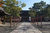 京都府 秋の豊国神社唐門