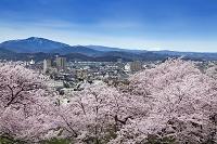鳥取県 鳥取城跡より鳥取市街