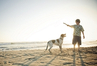 ペットと遊ぶ男の子