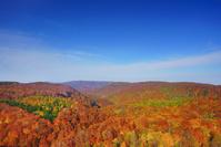 青森県 城ヶ倉大橋から望む城ヶ倉渓谷の紅葉と飛行機雲と岩木山...