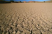 ナミビア ナミブ砂海 ソサスブレイ 涸れ池