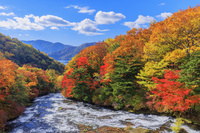 日本 栃木県 紅葉の竜頭滝と中禅寺湖 日光