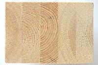 集成材の構造 木目