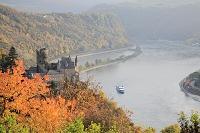 ドイツ ライン川 ねこ城