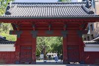 東京都 東京大学 赤門