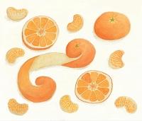 Oranges みかん