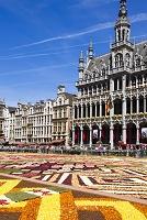 ベルギー ブリュッセル グラン=プラス(大広場) フラワーカ...