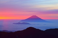 静岡県 南アルプス赤石岳より見る朝焼けの富士山と雲海の山並み