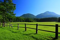 栃木県 夏の奥日光 朝の光徳牧場