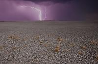 ナミビア 砂漠