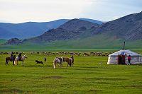 モンゴル バヤンホンゴル県 遊牧民のキャンプ