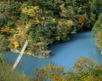 寸又峡 夢の吊り橋