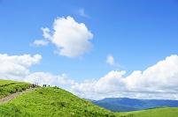 長野県 夏の霧ヶ峰高原
