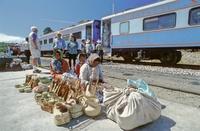 メキシコ チワワ太平洋鉄道とタラウマラ族