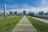 豊洲ぐるり公園と有明のビル群