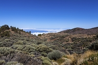 スペイン テネリフェ テイデ国立公園