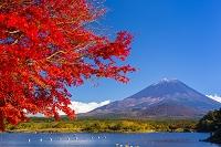 山梨県 精進湖から富士山