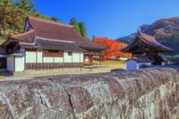 岡山県 旧閑谷学校 石塀と講堂と紅葉の階の木と公門