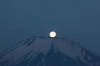 山梨県 パール富士山