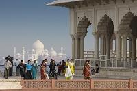 インド アーグラ城塞よりタージ・マハル