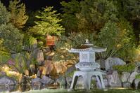 ライトアップされた日本庭園