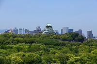 大阪城公園と大阪城